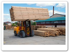 Transport tarcicy